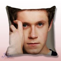 Niall Horan One Direction Throw Pillow Cover