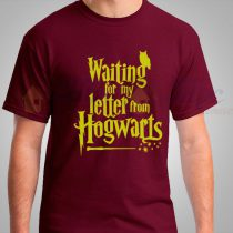 Waiting for my letter from hogwarts T Shirt